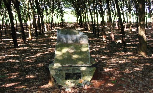 longtan relics